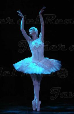 English National Ballet 0837